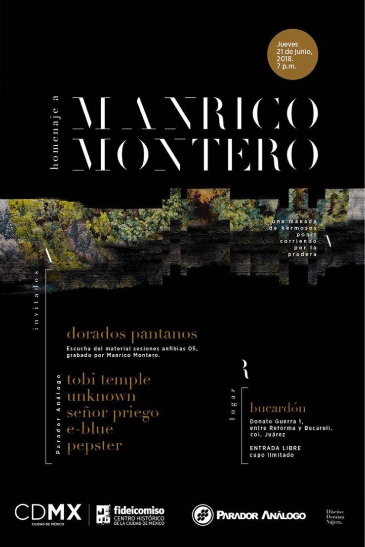 Homenaje a Manrico Montero, poster, diseño de Demian Nájera